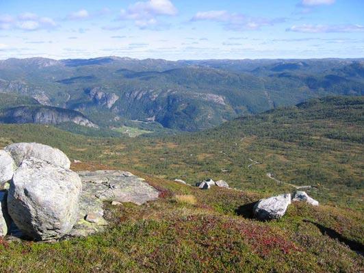 sumarbilde-uppstad-fjellgrend